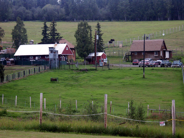 muskoxfarm1.jpg